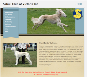 Learn What Makes The Best Dog Club Websites